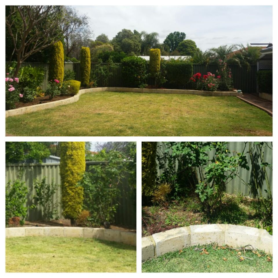 garden-maintenance-retic-forrestfield2