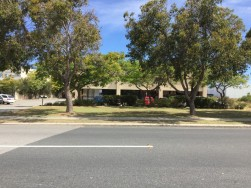 commercial-gardening-perth