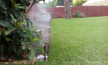 reticulation-lawn-greenmount1